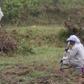 daniel otis — cluster bombs laos (CLUSTER clearing)(8)